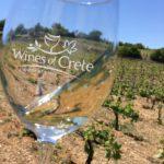 Cretan wine comes of age
